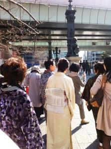 満開の桜の中日本橋を渡る